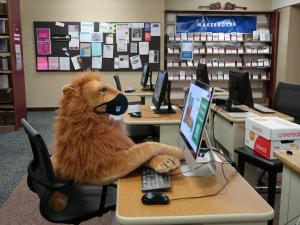 masked stuffed lion at computer